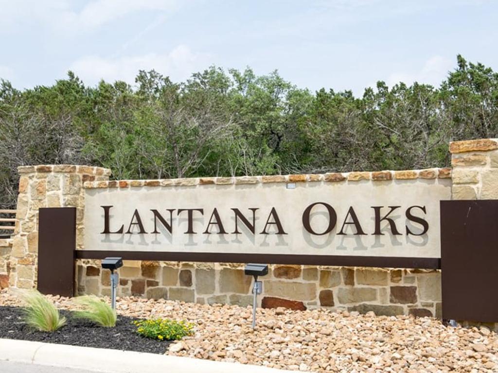 Lanata Oaks